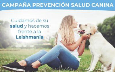 Campaña prevención salud canina
